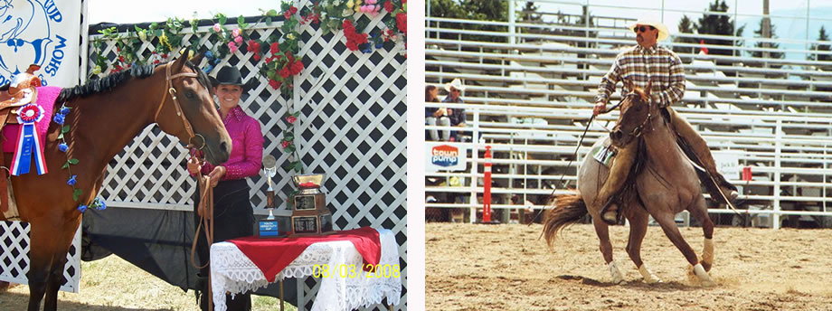 Cole Redhorse Photo Gallery of Horses